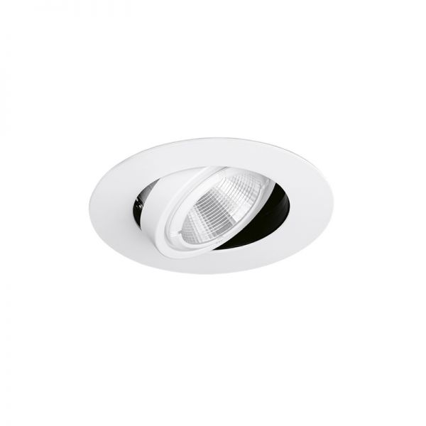 Aurora Enlite AlbanPro Adjustable COB LED Wall Washer